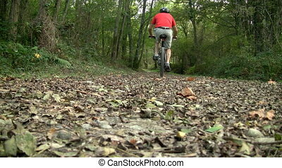 Mountain biker going uphill in the forestRecorded with a...