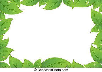 Green Leaves Background, Isolated On White Background,...