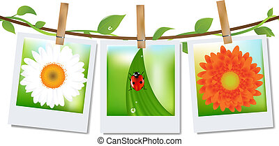 Photo Frames With Nature Image - 3 Photos With Image of...