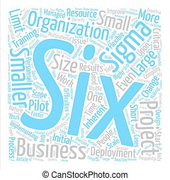 Six Sigma Deployment In Smaller Organizations text...