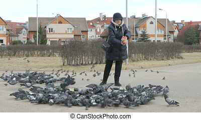 Adult woman feeding flock of pigeons and sparrows