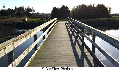 Point of view shot of riding a bicycle in Murtosa, Portugal....