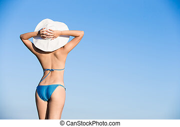 woman wear bikini - beauty woman wear bikini back to you and...