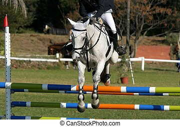 Show Jumping Horse and Rider - Beautiful white horse jumping...