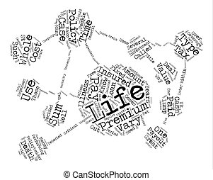 What Is Whole Life Insurance Word Cloud Concept Text Background
