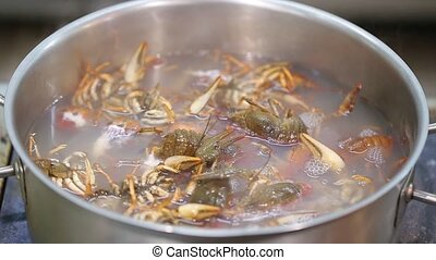 Crawfish in boiling water - Crayfish cooked in boiling water...