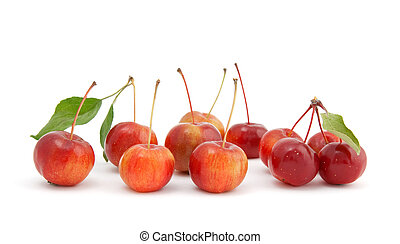 Chinese cherry apples on white background