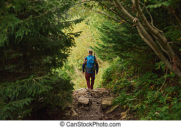 Lone hiker walking through a path deep in the forest -...