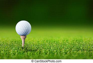 golf ball - close up with a golf ball