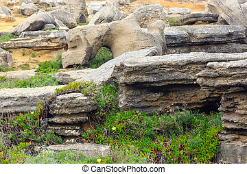 Rock formations and flowers. - Rock formations and flowers...