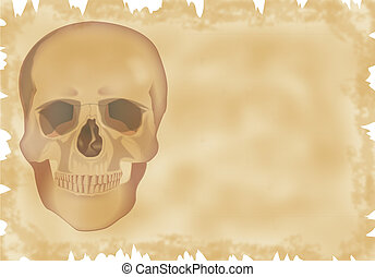 parchment with skull
