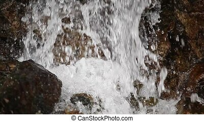 Water falling, small forest cascade