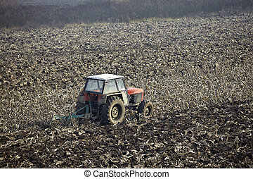 agriculture tractor cultivated lanf field vegetable
