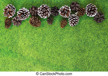 Pine and Fir cones on vibrant green felt background