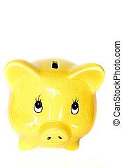 A stock photograph of a piggy bank.
