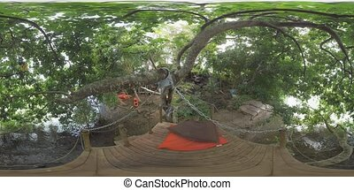 360 VR Place for rest on the river bank with trees,...