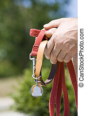 Dog owner - Senior man's hands with a dog's leash and...
