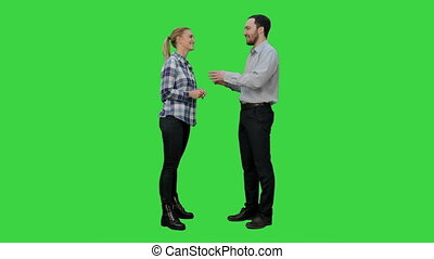 Couple of lovers stand, talk, laugh on a Green Screen,...