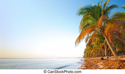 Tranquil Morning Scene from the Beach - Look at a beach with...