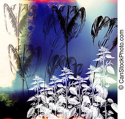 A collage using botanical andarchitecturalelements to construct abalanced composition.