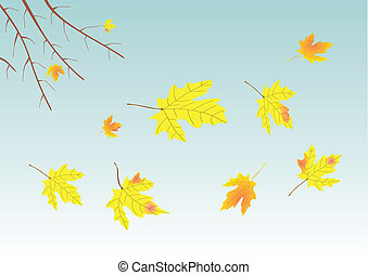 Autumn - falling of leaves from a tree in autumn