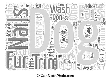 The Clutter Queen Word Cloud Concept Text Background