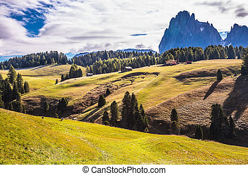 The landscape of the Alps di Siusi - The Dolomites - World...