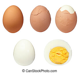 egg food - various eggs on white background each one is in...