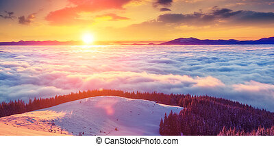 beautiful wintry landscape - Majestic foggy landscape...
