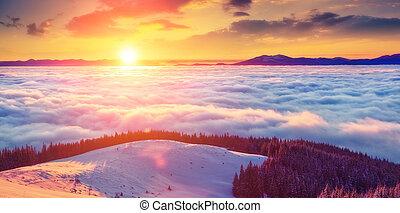 beautiful wintry landscape - Majestic foggy landscape...
