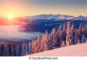 beautiful wintry landscape - Majestic landscape glowing by...