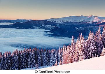 beautiful wintry landscape - Majestic landscape glowing by...