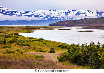 Flat tundra shores - Fjord in Iceland among flat tundra...