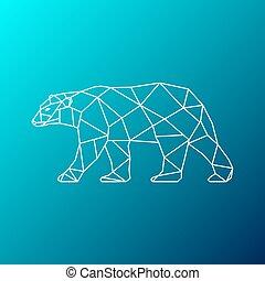 polar white bear walking
