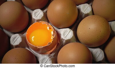 Eggs lie in the cardboard support,one egg broken,