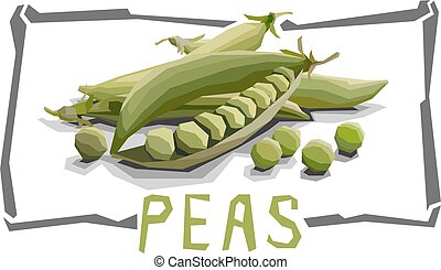 Vector simple illustration of peas. - Vector simple...