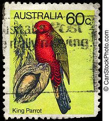 AUSTRALIA - CIRCA 1980 King Parrot - AUSTRALIA - CIRCA 1980:...