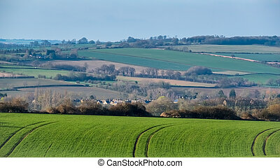 Scenic View of the Rolling Oxfordshire Countryside