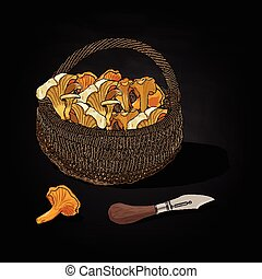 Mushrooms in the basket. Vector illustration.