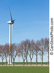 Dutch field with a row of trees and a windturbine