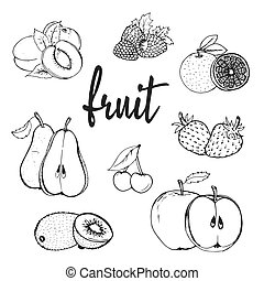 fruit hand drawn contour