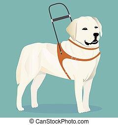 Labrador retriever guide dog vector illustration
