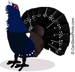 Capercaillie bird cartoon vector illustration