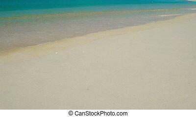 Ocean Waves Wash a Pristine Tropical Beach Paradise