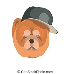 Chow Chow dog with dark cap breed close up portrait. Vector...
