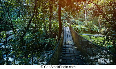 Handmade Pedestrian Bridge over Stream at Nature Park in...