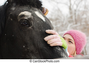 Woman cleaning the horse neb - Horizontal outdoors shot of a...