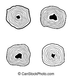 Collection of tree rings.