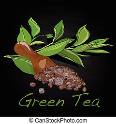 Green tea leaf vector artwork isolated