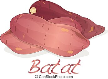 Batat, sweet potato vector isolated on white background